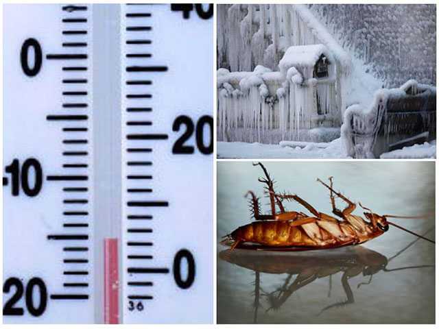 Замораживание на низких температурах